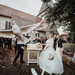 Hochzeitsfotograf_Hochzeitsgaeste_Empfang_fliegende_Taube