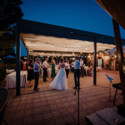 Wedding_photographer_reception_party_dancing_in_the_night